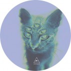 SHAUN REEVES & TUCCILLO***SUPERSTITIONS EP