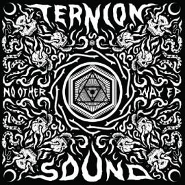 TERNION SOUND***NO OTHER WAY EP