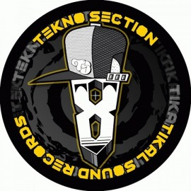 VARIOUS***TEKNO SECTION 08